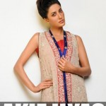 Sadaf Malaterre Women Formal Wear Collection 2014 for Spring (4)