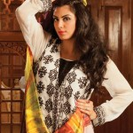 Strawberry Exclusive Embroidered Chiffon Dresses 2014 for Women 1