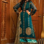 Strawberry Exclusive Embroidered Chiffon Dresses 2014 for Women
