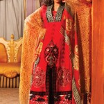 Strawberry Exclusive Embroidered Chiffon Dresses 2014 for Women 2