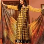 Strawberry Exclusive Embroidered Chiffon Dresses 2014 for Women 4