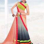 Super Stylish Lehenga Choli Collection 2014 for Women