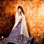 Zara Shahjahan Exclusive Party Wear Collection 2014 for Women 2
