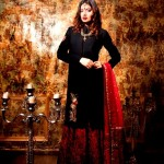 Zara-Shahjahan-Exclusive-Party-Wear-Collection-2014-for-Women-9