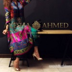 Ayesha Ahmed Party Dresses 2014 For Women 1