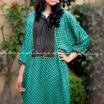 Silaayi-Spring collection 2014 1