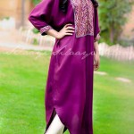 Silaayi-Spring collection 2014 2