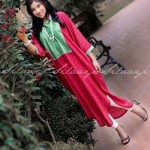 Silaayi-Spring collection 2014 4