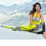 Spring summer Exclusive 2014 by firdous fashion 2014 9