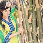 Cynosure Summer Dresses 2014 for Women 1