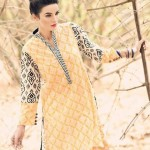 Cynosure Summer Dresses 2014 for Women 5
