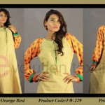 Evolution Textile embroidery dress collection 2014 2