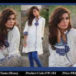Evolution Textile embroidery dress collection 2014 3