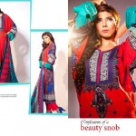Jubilee Cloth Mills collection 2014 siwss vol 2 8