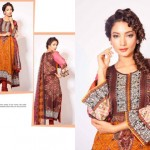 Jubilee Cloth Mills collection 2014 siwss vol 2 9