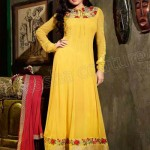 Madhubala New Salwar Kameez collection 2014 14