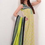 Nation by Riaz Art Lawn Prints 2014 For Summer 3