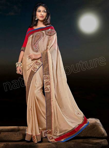Brand New Dazzling Saree Styles 2014 For Ladies By Natasha Couture (6)