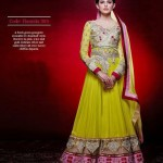 Gorgeous Semi Stiched Anarkali Collection 2014 1
