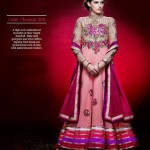 Gorgeous Semi Stiched Anarkali Collection 2014 2