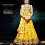Gorgeous Semi Stiched Anarkali Collection 2014 6