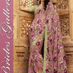 Nice-Collection Sarees Designs for women 2014