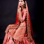 Silaayi-BRIDALS DRESSES COLLECTION 2014