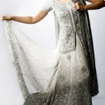 Wedding Ceremony Dresses Collection 2014 For Invited Personalities (12)
