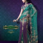 AGNI Marriage ceremony Saree Variations 2014 Avalon Clothes Wedding Outfits (1)