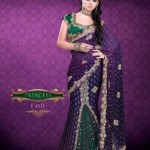 AGNI Marriage ceremony Saree Variations 2014 Avalon Clothes Wedding Outfits (2)