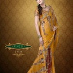 AGNI Marriage ceremony Saree Variations 2014 Avalon Clothes Wedding Outfits (3)