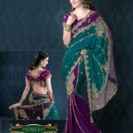 AGNI Marriage ceremony Saree Variations 2014 Avalon Clothes Wedding Outfits (7)