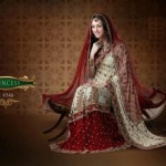 AGNI Marriage ceremony Saree Variations 2014 Avalon Clothes Wedding Outfits (8)