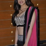 Alia Bhatt Incredibly Hot And Gorgeous Images Introduction (5) - Copy
