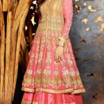 Anarkali Brand New Celebration Shilpa Shetty Use Frocks Styles 2014 (2)