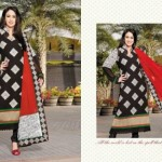 Attractive Eid Suits 2014 By Anarkali Brand For Wives (3)