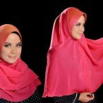 Completely New Solution to Humility Hijab Method Fashions (3)
