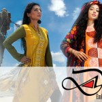 Fashionable Stitched Lawn Set 2014 For Eid Event By Dicha (1)