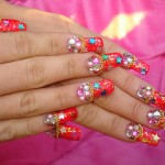 Festival Nail Plate Artwork Style and Design & Suggestions 2015 (5)