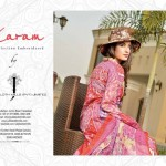 Gorgeous Eid Day Dresses Release 2014 For Women (1)