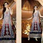 Indian Eid Festival Apparel Arrangement 2014 Brand New Release by Ramsha Zari (6)