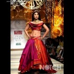 Indian Fashion Week Photograph Shots Wills 2014  Shilpa Shetty Pics (1)