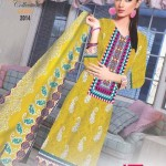 Interesting Beautiful Have Garments Choice 2014 (6)