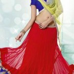 Kaneesha dressses collection 2014 5