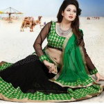 Most Up-to-Dated Trendy & Stitched Design of Lehenga Choli Outfits for Females (17)