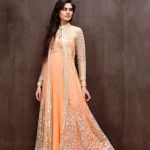Specialized Marriage Dresses Anarkali Frocks Fashion Styles For Beauties 2014 (7)