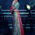 Tena Durrani Bridal Wear Dresses Collection 2014 5