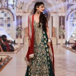 2014 Pakistani Bridal Couture Ceremony Apparel for Ladies (1)