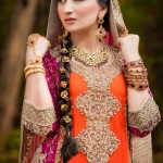 2014 Pakistani Bridal Couture Ceremony Apparel for Ladies (3)
