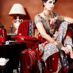2014 Pakistani Bridal Couture Ceremony Apparel for Ladies (4)